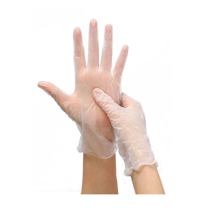 Vinyl Gloves Disposable Clear PVC Gloves9 Inches Powder-Free 100pcs in Box